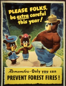 Prevent Forest Fires!